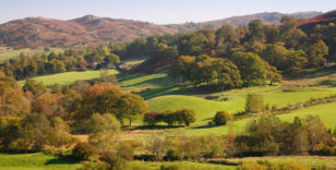 Land Management & Diversification